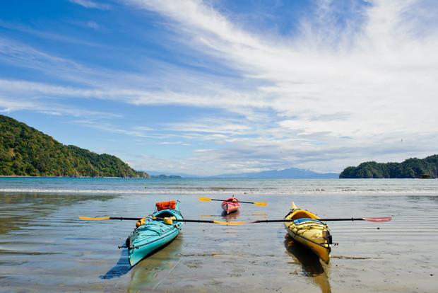 5463e2242a3d21fa285c5d20_curu-wildlife-refuge-nicoya-peninsula-costa-rica